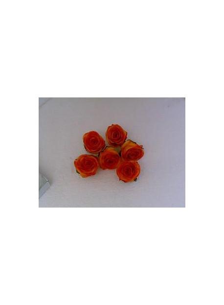Boîte de 6 roses en cire pêche