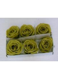Boîte de 6 roses en cire verte