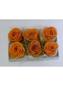 Boîte de 6 roses en cire orange